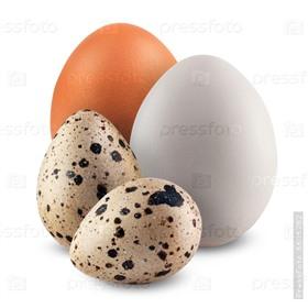 Куриные и перепелиные яйца!
